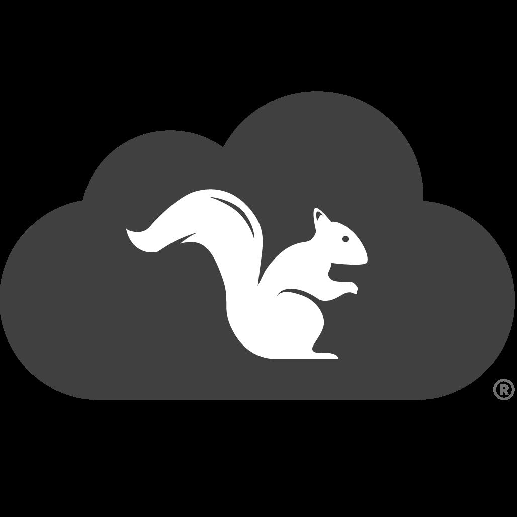Squirrels LLC Logo